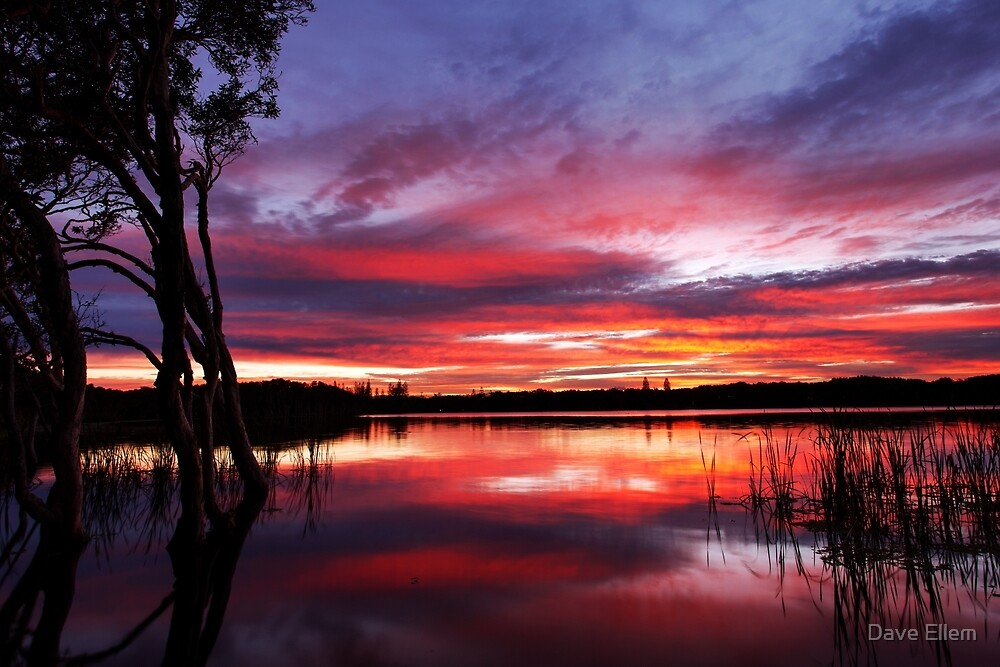 Dawn reflections over Lake Ainsworth, NSW by Dave Ellem