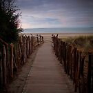 Treasured Pathway by Mark Williamson