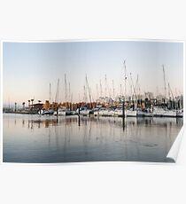 Feeding Fish - Early Morning Marina at Portimao Portugal Poster
