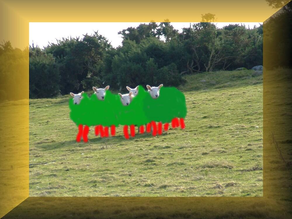 Marshan Sheep by rooboy