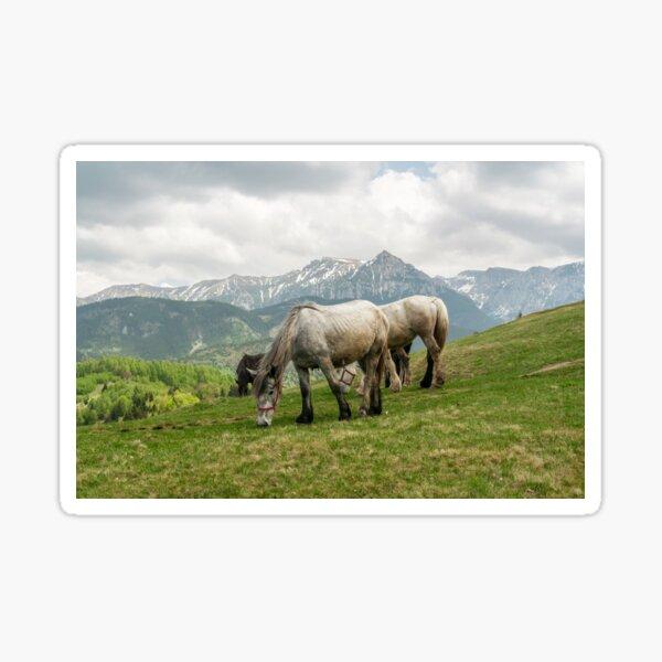 Keep grazing Sticker