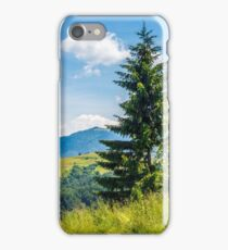 spruce tree on a mountain hill side iPhone Case/Skin