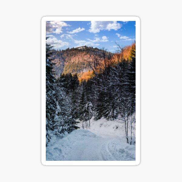snowy road through spruce forest Sticker