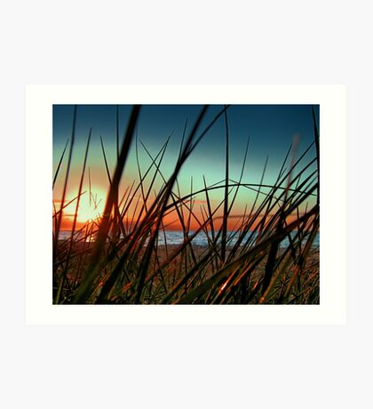 Sunset Grass. Art Print