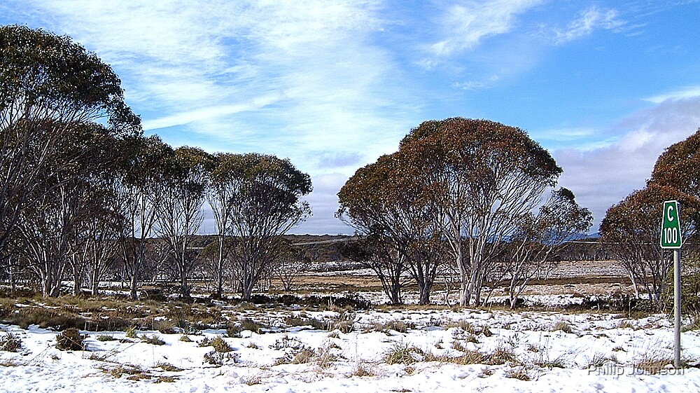 Cooma 100 - Snowy Mountains National Park,NSW Australia by Philip Johnson