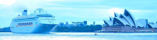 Morning Greeting - Sydney Harbour, Sydney Australia by Philip Johnson