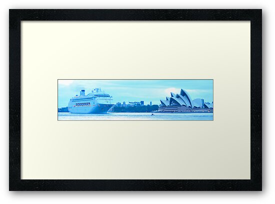 Morning Greeting - Sydney Harbour, Sydney Australia by Philip Johnson