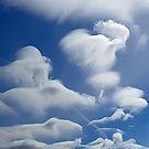 White angel by Bluesrose