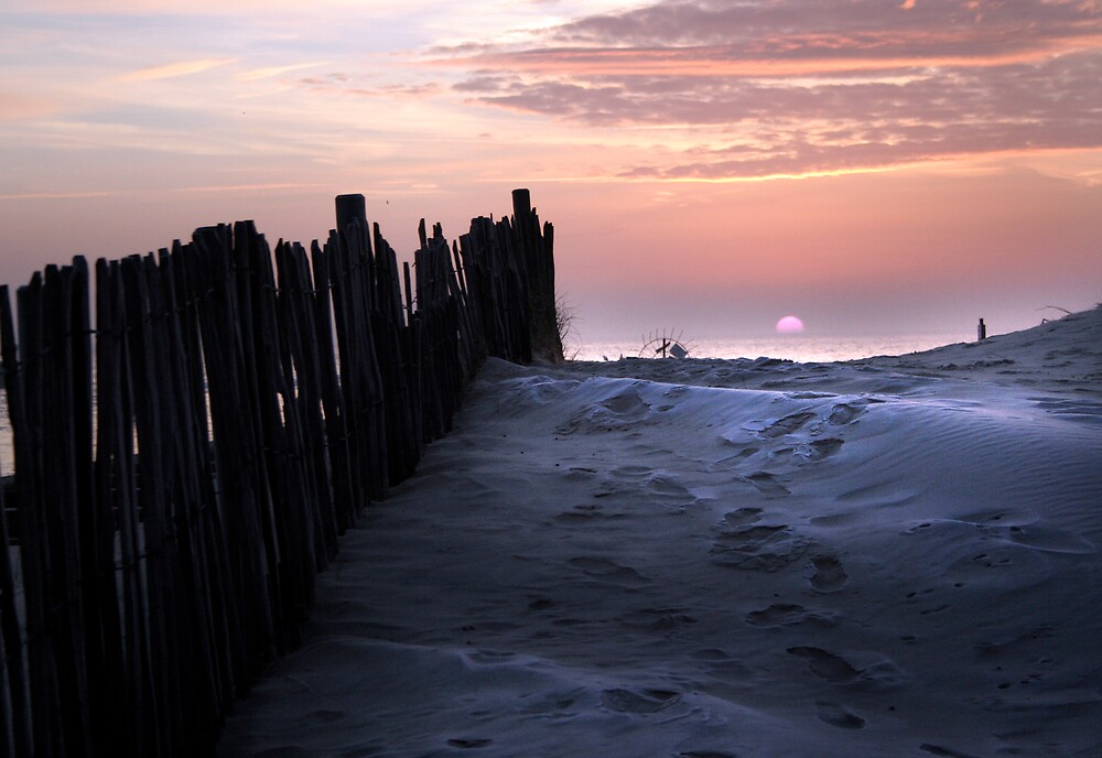 Frosted dunes by Laurence Grayson