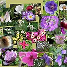 Floral collage by jamluc