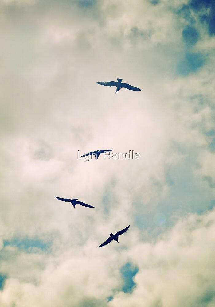 Bird Dance. by Lyn  Randle
