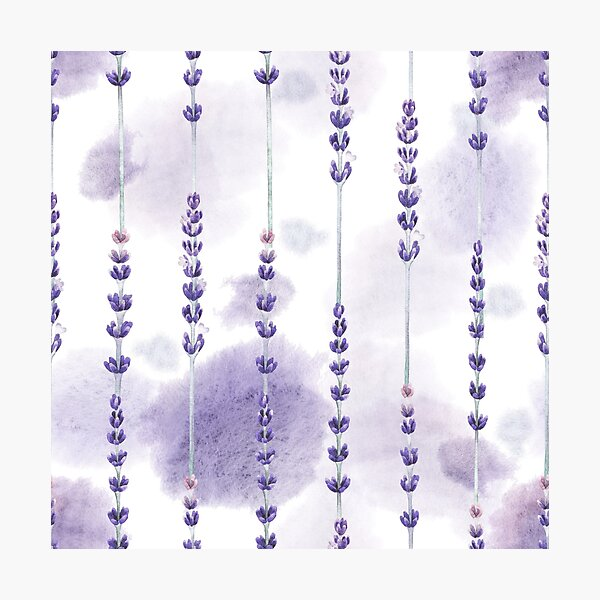 Aquarell Lavendel Fotodruck