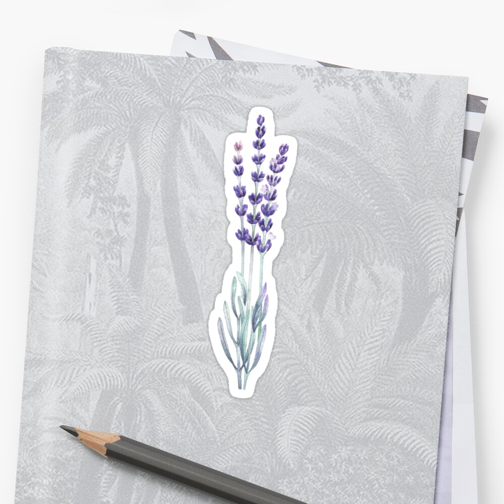 Watercolor lavender Sticker