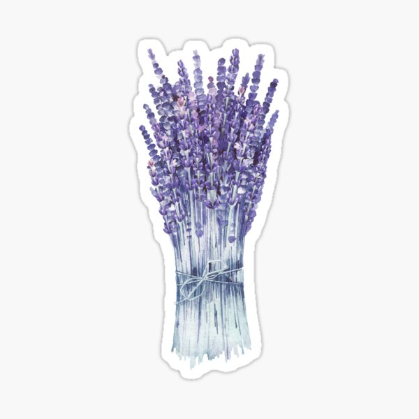 Watercolor lavender bouquet Sticker