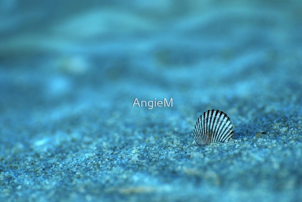Underwater Seashell by Angie Tirado