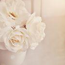 Cream rose in vase. by Lyn  Randle