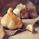 Smoked Garlic. by Lyn  Randle