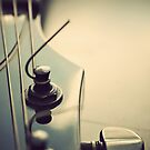 Fine Tuning. by Lyn  Randle
