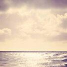 Sea Sparkle. by Lyn  Randle