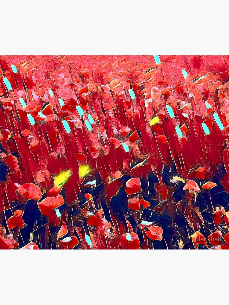 Magical poppy field by blackhalt