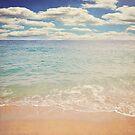 The Beach by Lyn  Randle