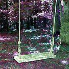 swing by Sandra Hopko