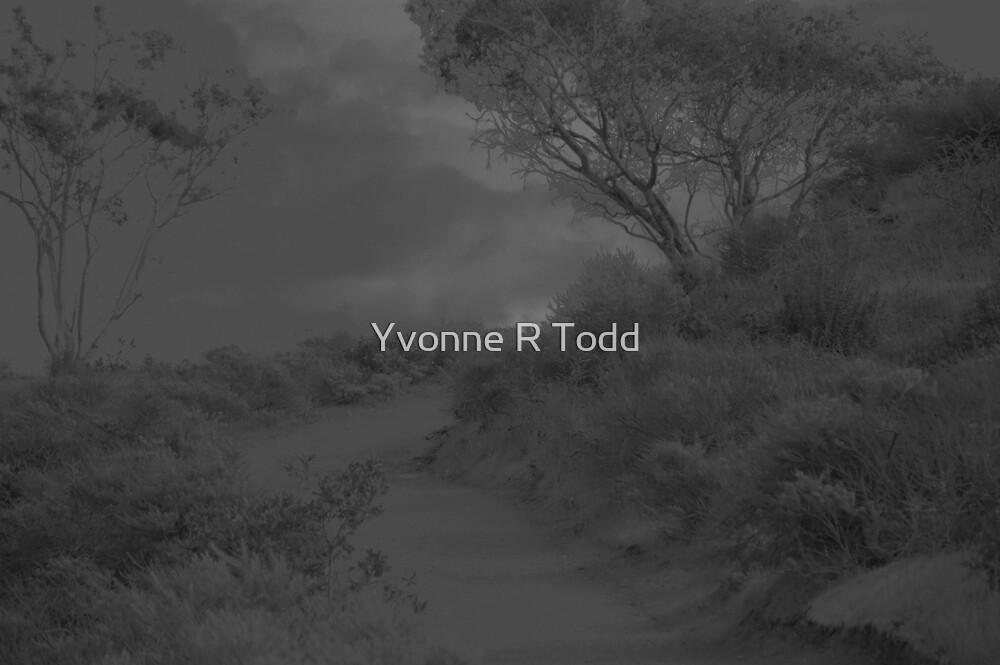 The Quarry by brwnsuga21