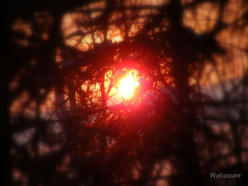 Ball of Fire by Wabassee