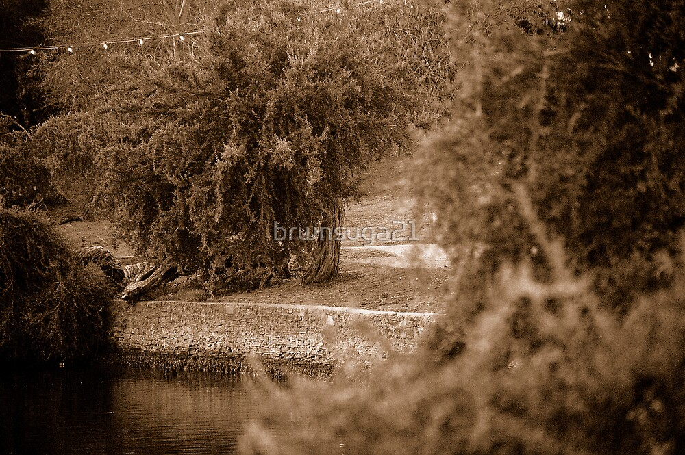 The Lake  by brwnsuga21