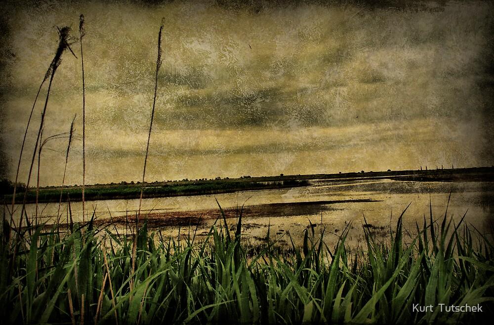 Down at the lake by Kurt  Tutschek