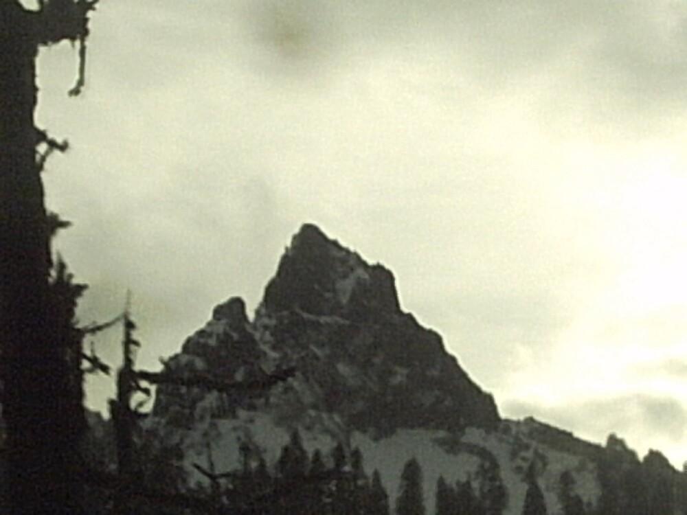 Twin Peak by ronda68