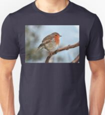 Robin Bird Fine Art Photography Unisex T-Shirt