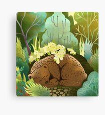Bear Nest Canvas Print