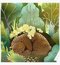Bear Nest Poster