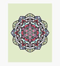 Flowers mandala #38 Photographic Print
