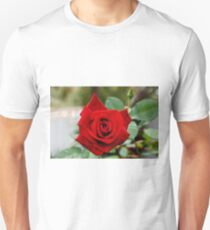 Red Rose 3 T-Shirt
