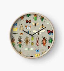 The Usual Suspects - Insects on grey - watercolour bugs pattern by Cecca Designs Clock
