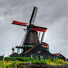 Dutch Windmill by Tom Gomez