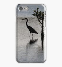 Great Blue Egret, Merritt Island, Florida, USA iPhone Case/Skin