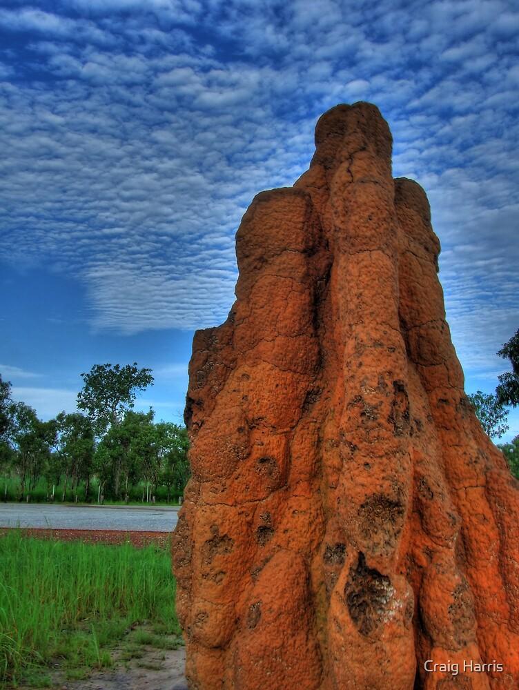 Termite Mound by Craig Harris