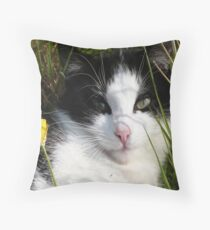 Pippin, The Youngest of the Fellowship Throw Pillow