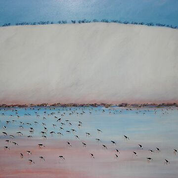 The Water Birds by Ding