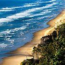 Cape Lookout Summer Waves Oregon coast by Amyn Nasser