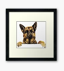 GERMAN SHEPERD Framed Print