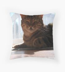 Sly Guy Throw Pillow