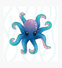 Octopus friend Photographic Print
