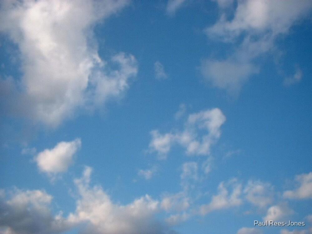 Sky. by Paul Rees-Jones