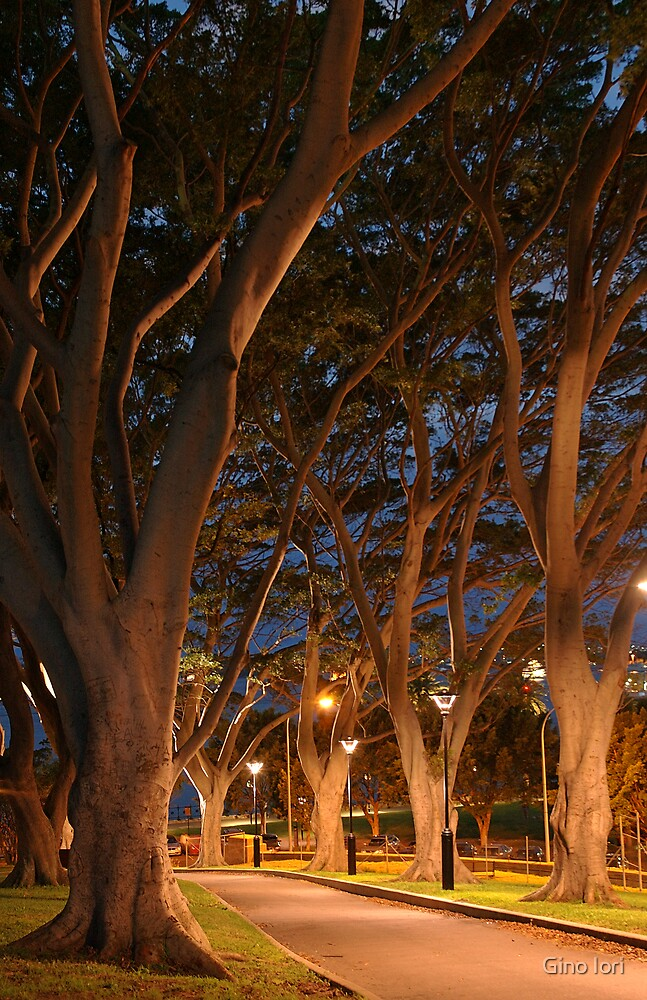 Path lights by Gino Iori