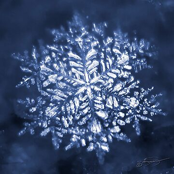 That snowflake by KandisGphotos