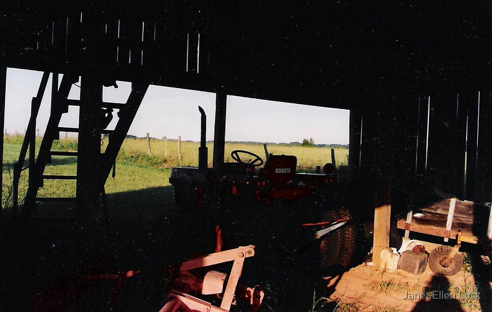 View From The Back of The Barn by Janet Ellen Lusk